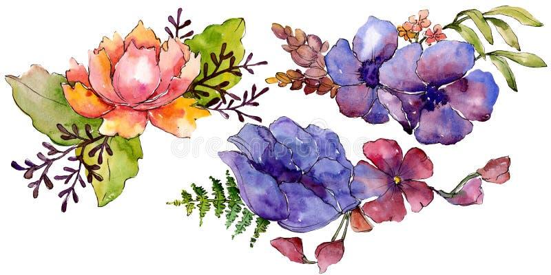 Flores bot?nicas florales del ramo p?rpura azul Conjunto del fondo de la acuarela Elemento aislado del ejemplo de los ramos ilustración del vector