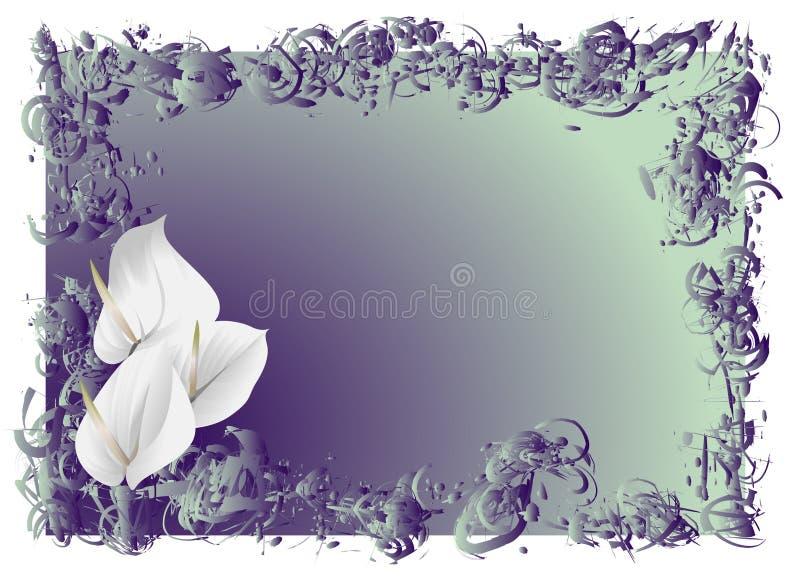 Flores brancas ilustração stock