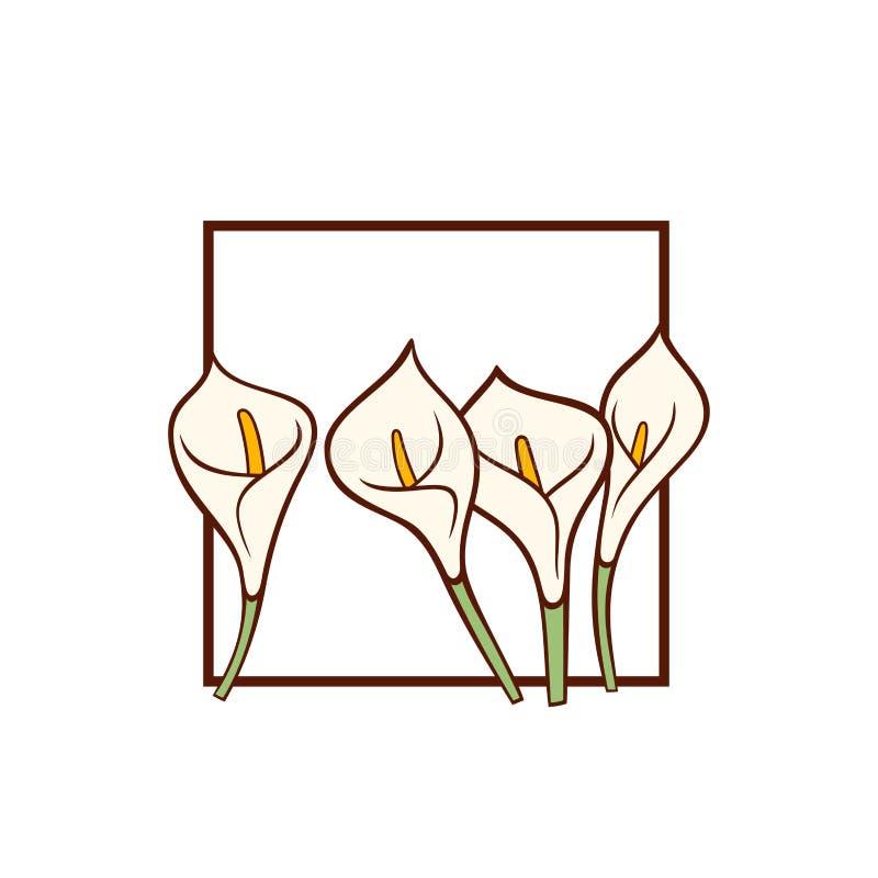 Flores brancas de lírio de Calla Molde do cartão do vetor ilustração royalty free