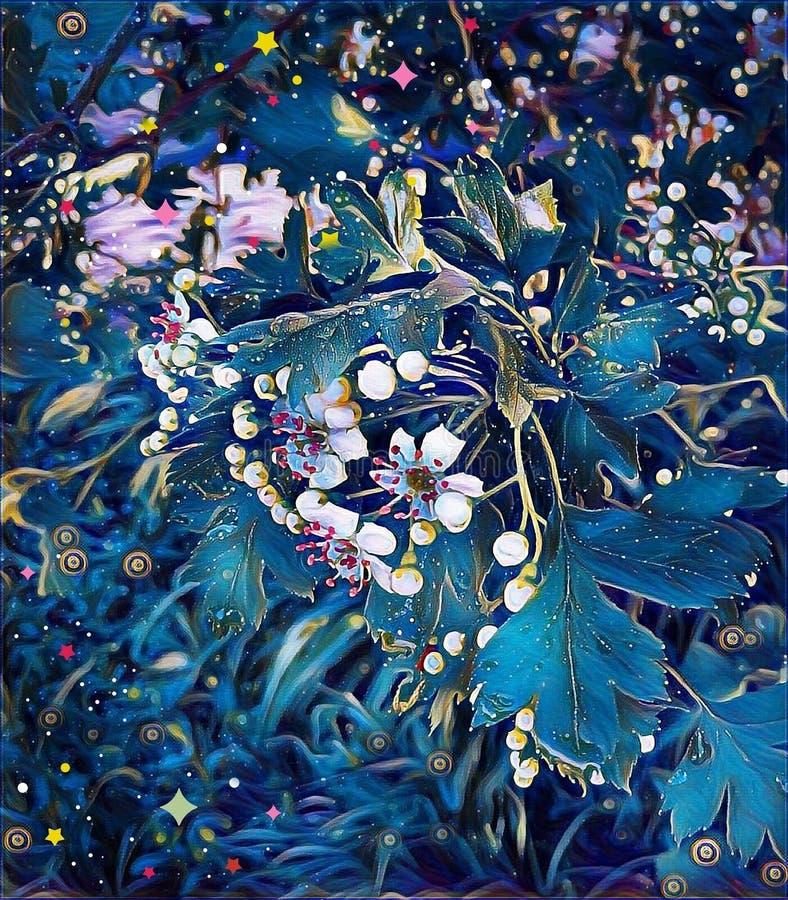 Flores brancas do espinho na mola no jardim fotos de stock royalty free