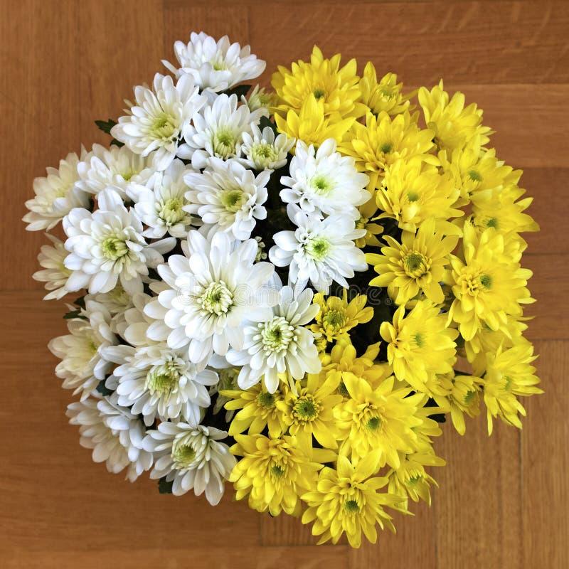 Flores brancas e amarelas do crisântemo fotos de stock