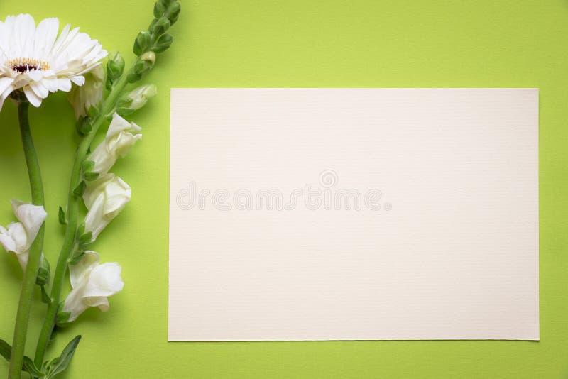Flores brancas e cartão da mensagem fotos de stock