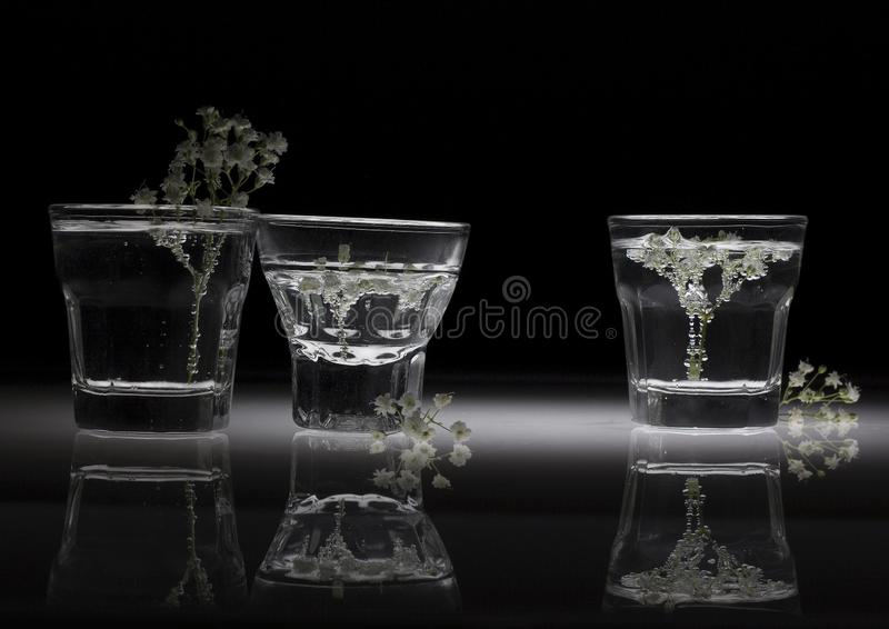 Flores brancas nos vidros com reflexão imagens de stock