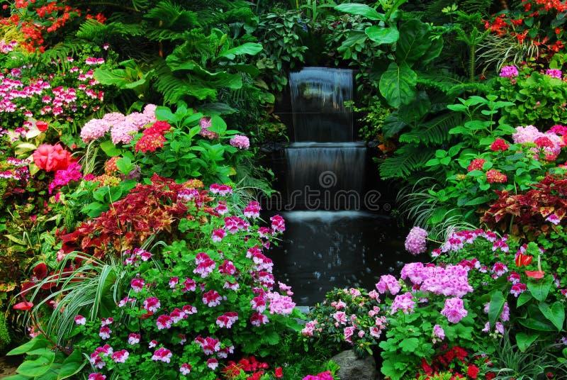 Flores, cachoeira no jardim imagens de stock royalty free