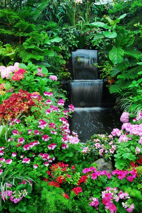 Flores, cachoeira no jardim fotos de stock royalty free