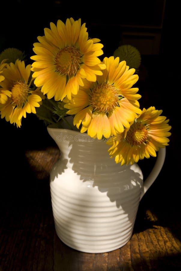 Flores caseras del país fotografía de archivo