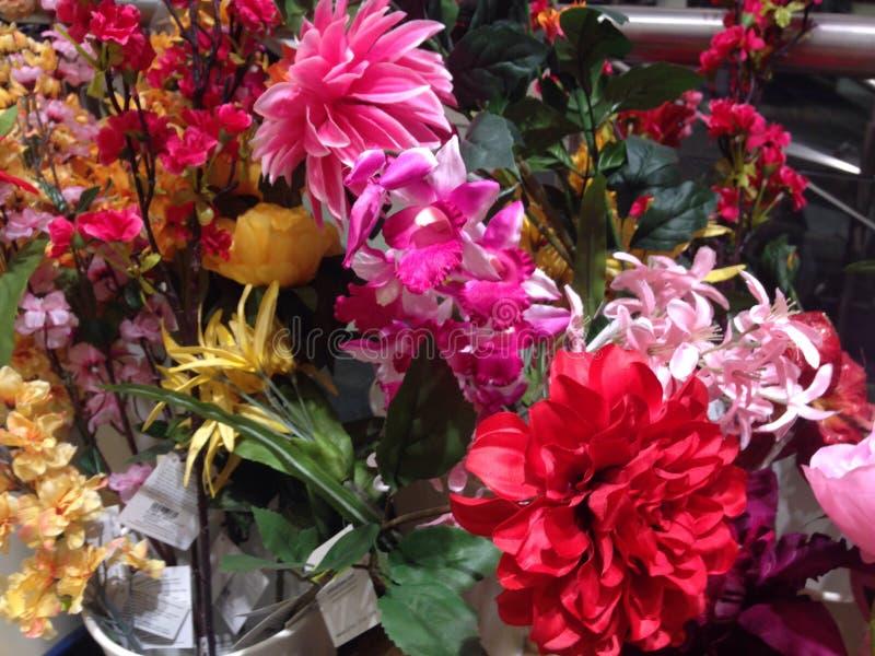 Flores coloridas imagens de stock royalty free