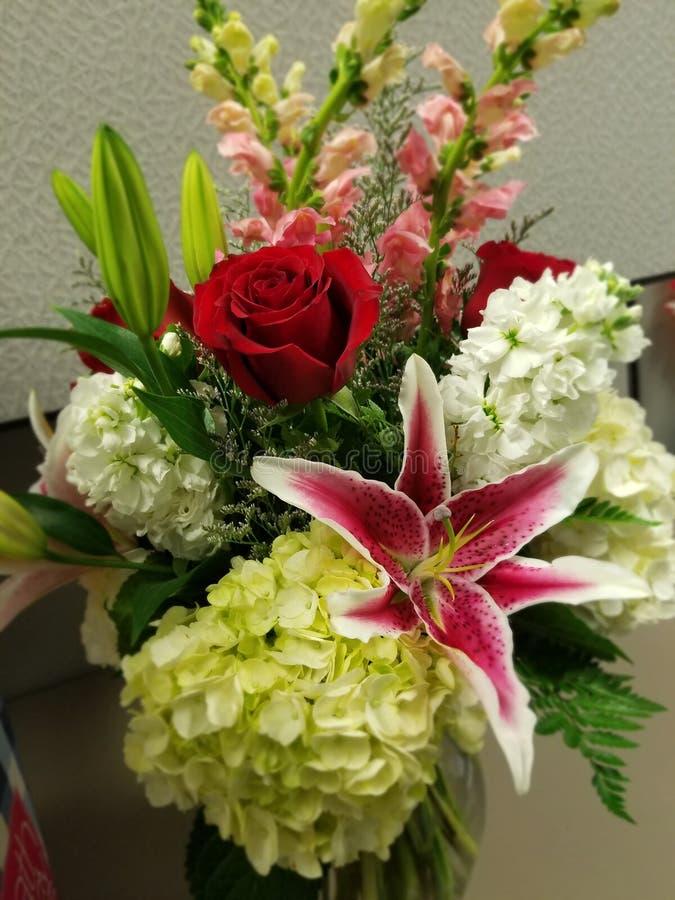 Flores coloridas imágenes de archivo libres de regalías
