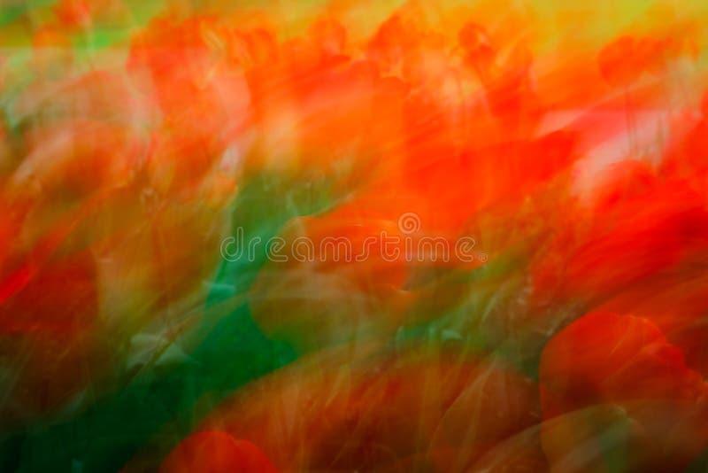 Flores coloridas abstractas imagen de archivo
