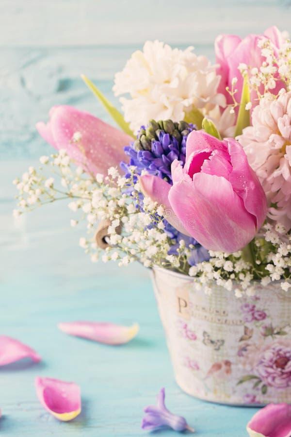 Flores coloridas cor pastel imagem de stock royalty free