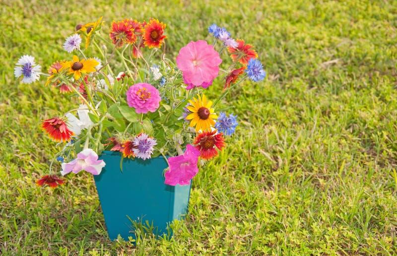 Flores coloridas da mola em um recipiente quadrado imagens de stock