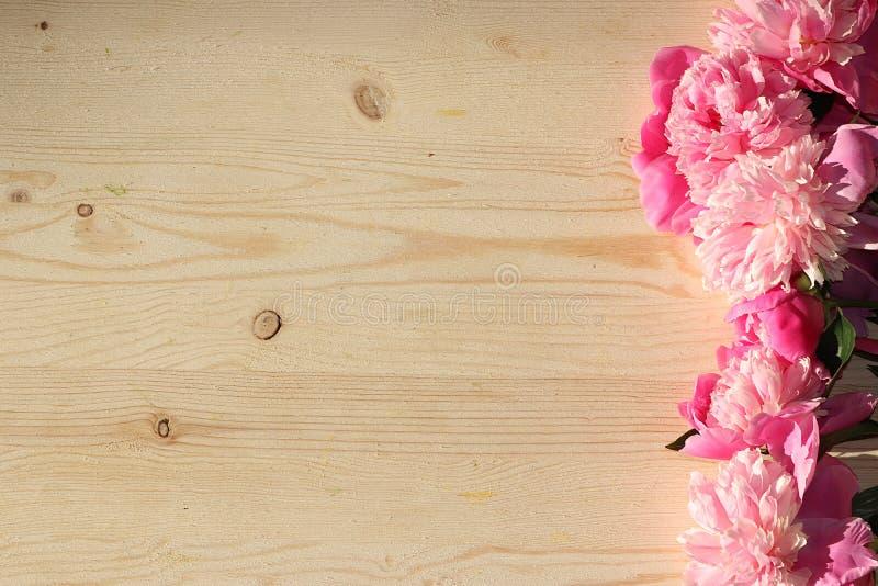 Flores coloridas de la peonía rosada en una tabla de madera, visión superior con el espacio de la copia, foco selectivo Flores ro foto de archivo libre de regalías