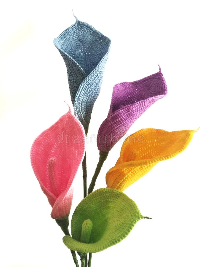 Flores coloridas del lirio de Cala en el fondo blanco, foco selectivo fotografía de archivo