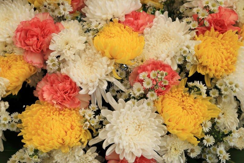Flores coloridas dispuestas como imagen de fondo natural fotos de archivo libres de regalías