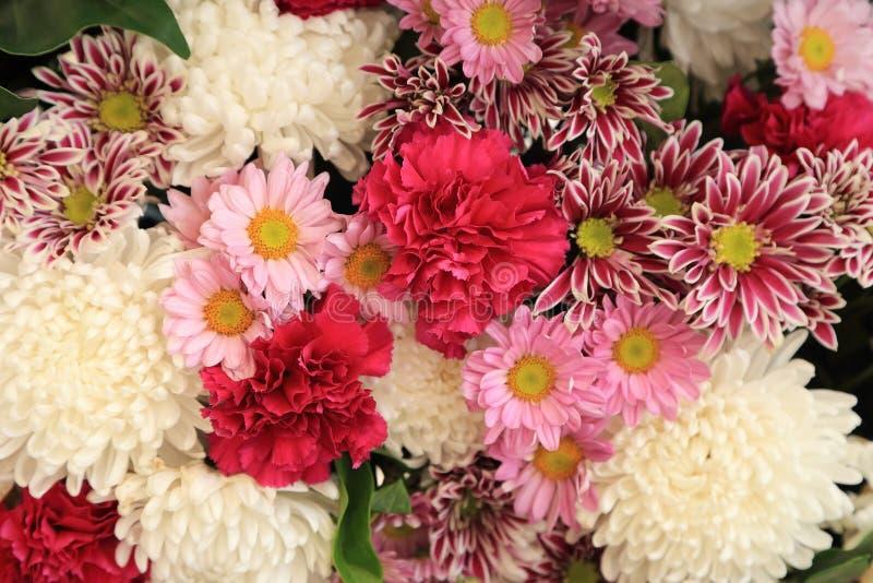 Flores coloridas dispuestas como imagen de fondo natural imagenes de archivo