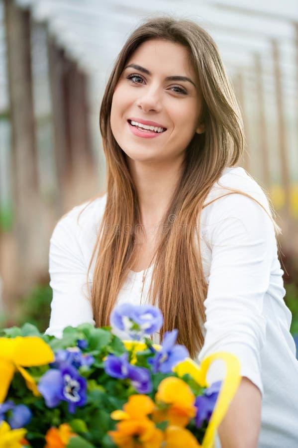 Flores coloridas en la estación de primavera foto de archivo libre de regalías