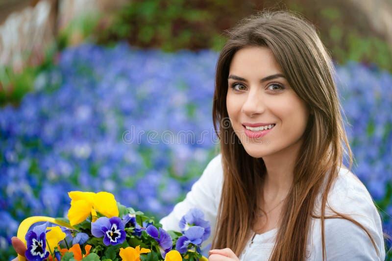 Flores coloridas en la estación de primavera fotografía de archivo libre de regalías