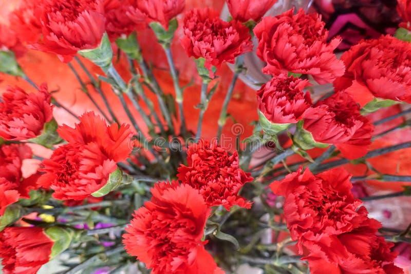 Flores coloridas, mercado de la flor fotos de archivo
