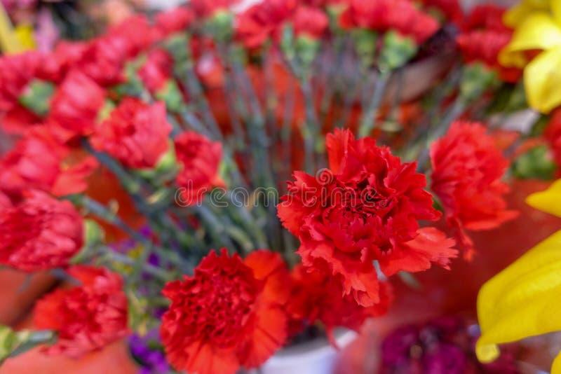 Flores coloridas, mercado de la flor imágenes de archivo libres de regalías