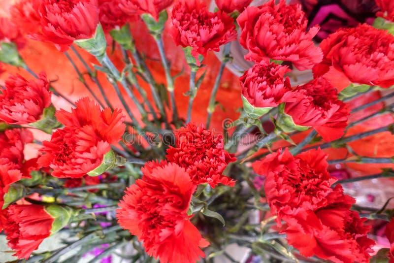 Flores coloridas, mercado de la flor foto de archivo libre de regalías