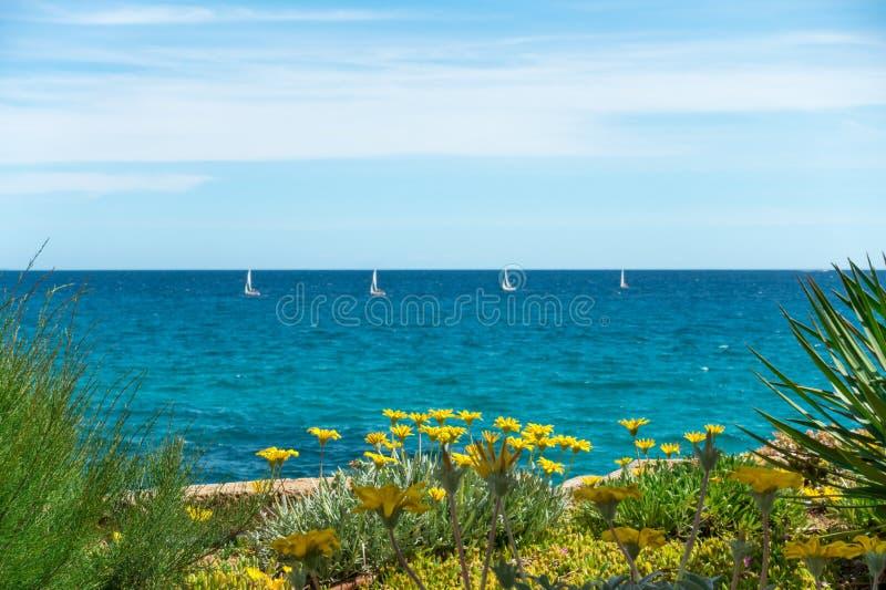Flores com quatro veleiros Água do mar e céu azuis fotografia de stock