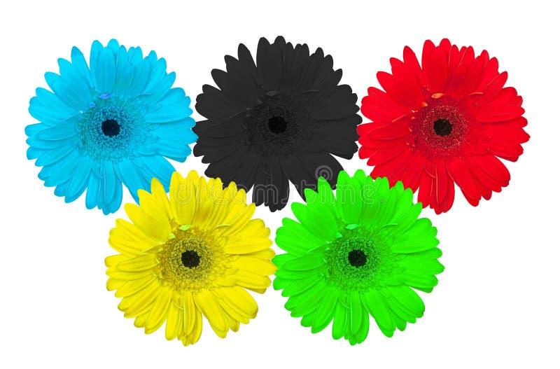 Flores como símbolo de anillos olímpicos fotografía de archivo libre de regalías