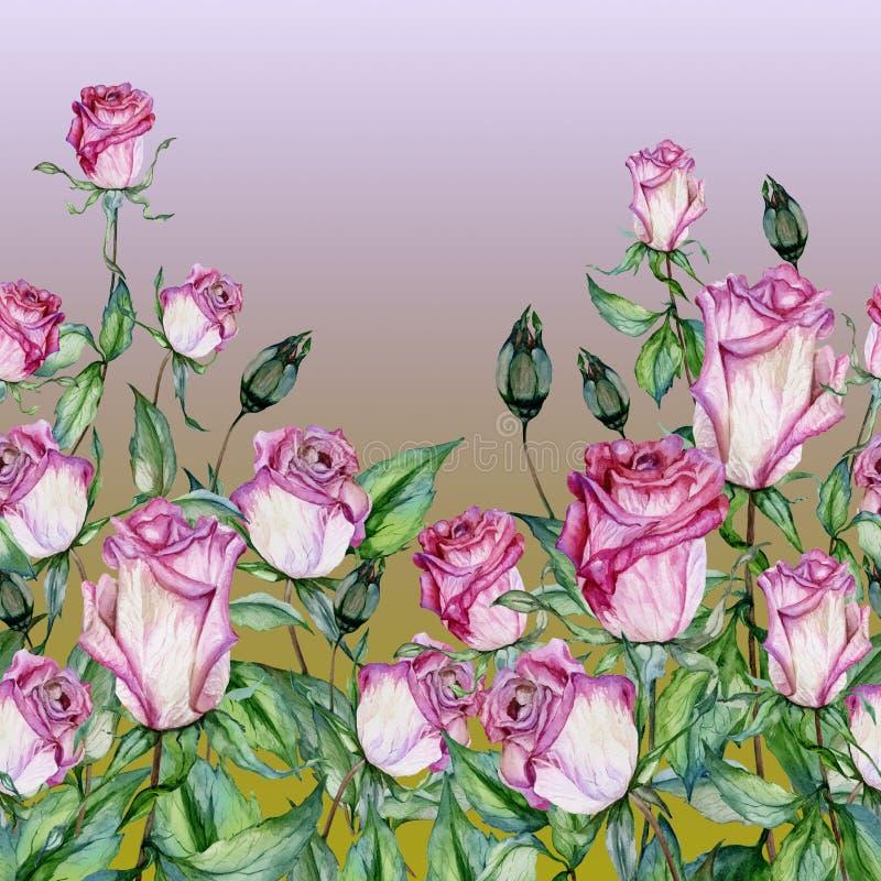 Flores cor-de-rosa bonitas com as folhas verdes no fundo do inclinação Teste padrão floral sem emenda, beira Pintura da aguarela ilustração stock