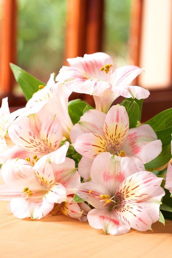 Download Flores Cor-de-rosa Bonitas Com Espaço Da Cópia Foto de Stock - Imagem de verde, grupo: 12809084