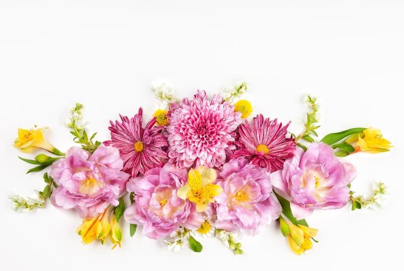Flores cor-de-rosa bonitas no fundo branco Configura??o lisa, espa?o da c?pia fotografia de stock
