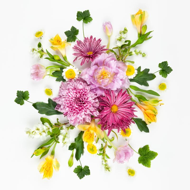 Flores cor-de-rosa bonitas no fundo branco Configura??o lisa, espa?o da c?pia fotos de stock royalty free