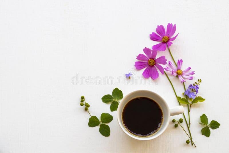 Flores cor-de-rosa cosmos com café quente espresso arranjo plano estilo postcard imagens de stock