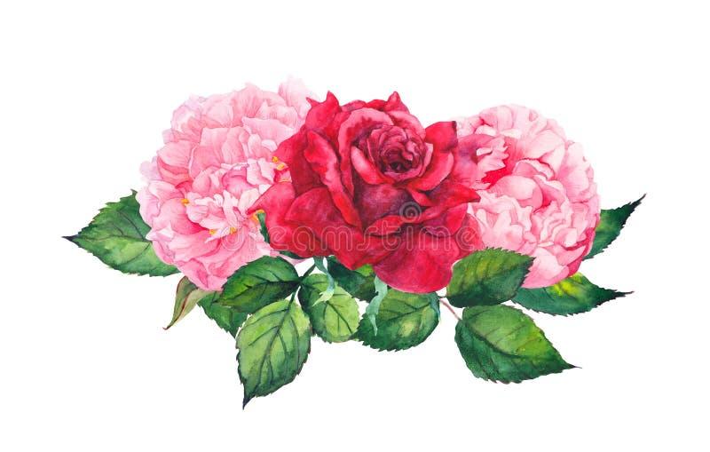 Flores cor-de-rosa da peônia e rosas vermelhas watercolor ilustração do vetor
