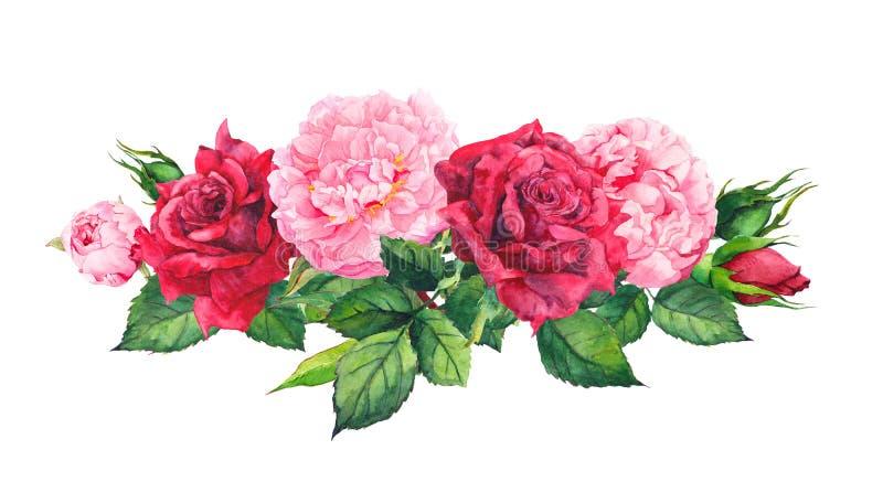 Flores cor-de-rosa da peônia e rosas vermelhas watercolor ilustração royalty free