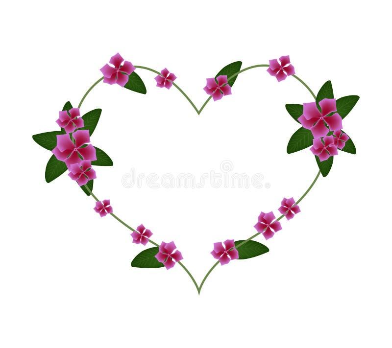 Flores cor-de-rosa da pervinca do cabo em uma forma do coração ilustração do vetor