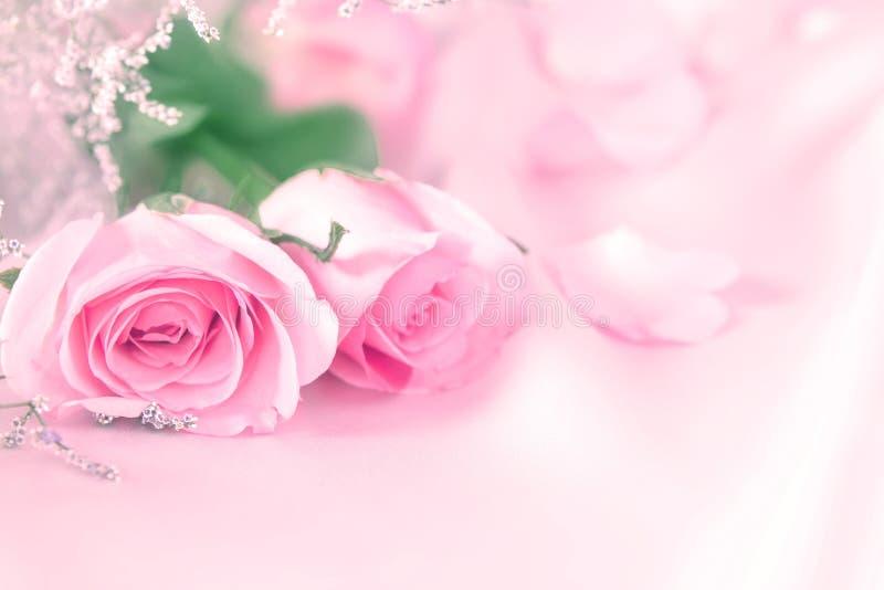 Flores cor-de-rosa do doce para o fundo do romance do amor fotos de stock