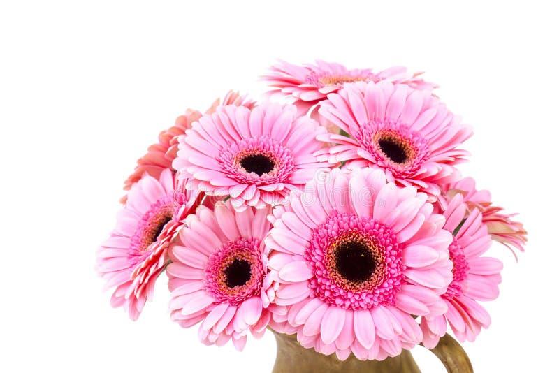 Flores cor-de-rosa do gerbera em um vaso fotografia de stock