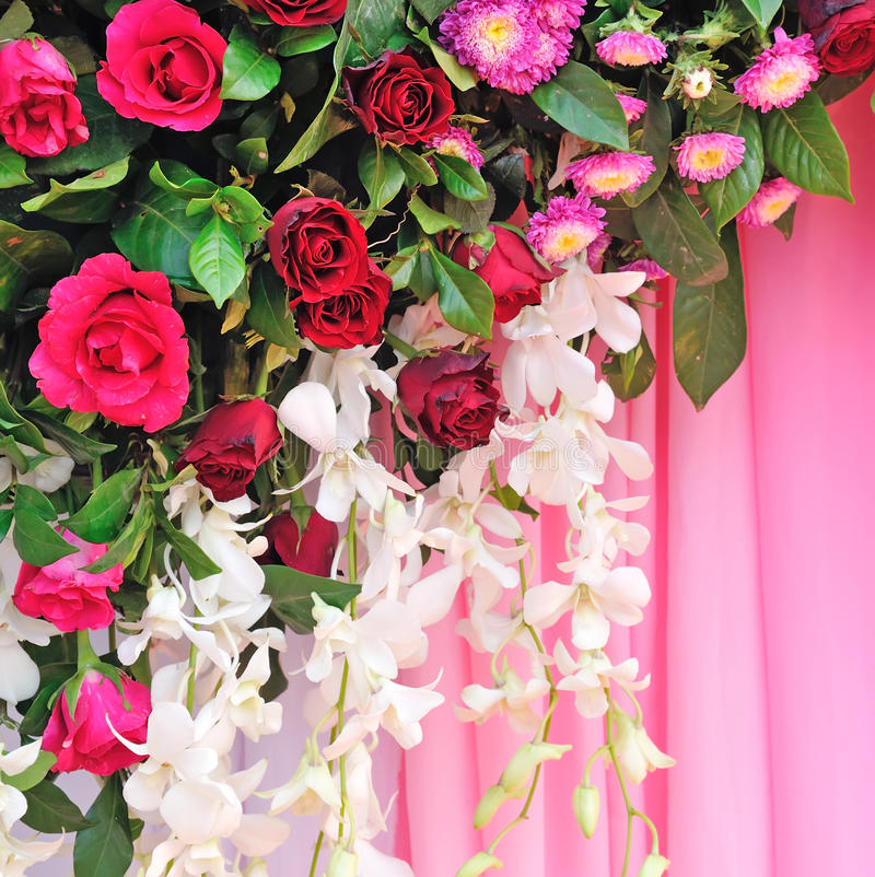 Flores cor-de-rosa e brancas do contexto fotografia de stock