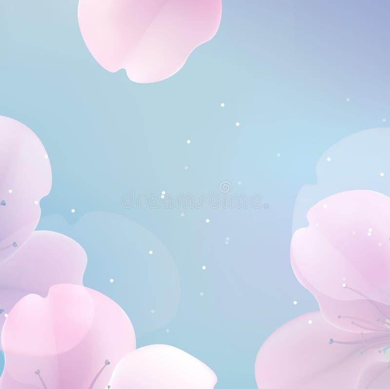 Flores cor-de-rosa macias elegantes da cor ilustração stock