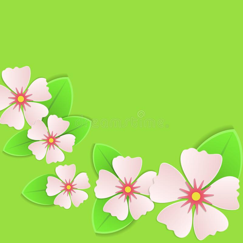 Flores cor-de-rosa no cartão verde da mola do fundo ilustração stock