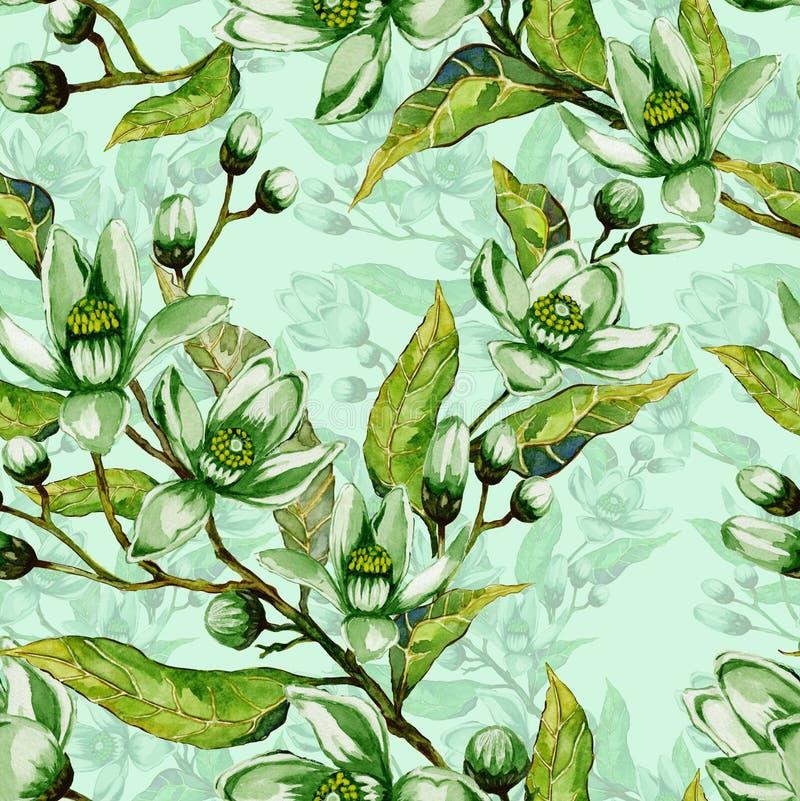 Flores da árvore em um galho Teste padrão sem emenda da primavera Flourish da mola Luz - fundo verde com contorno Pintura da agua ilustração do vetor