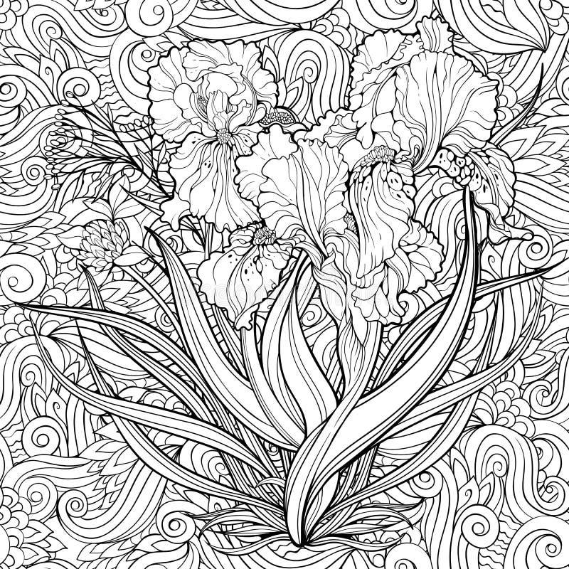 Flores da íris e backg floral Página da coloração ilustração do vetor