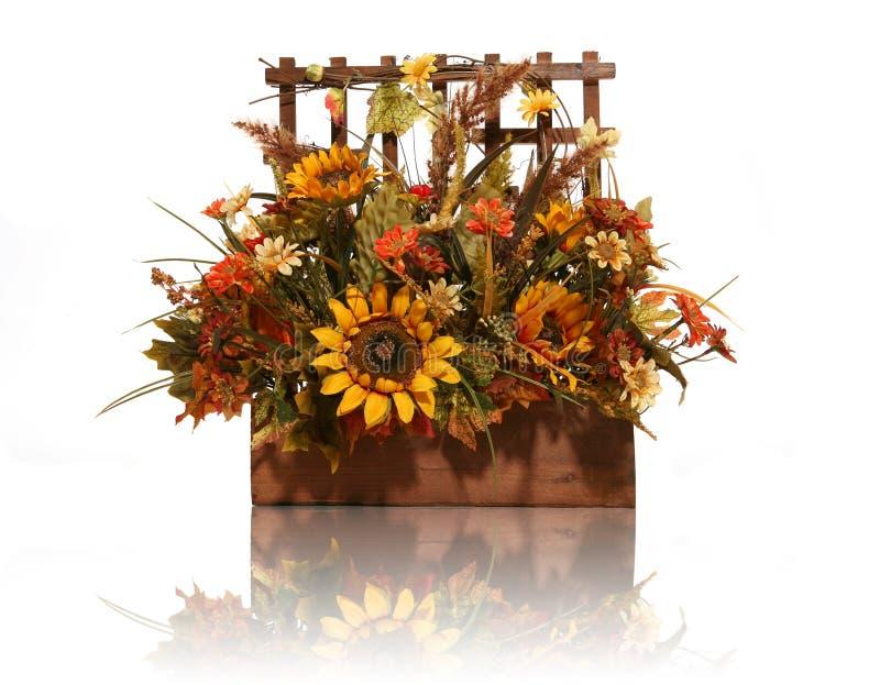 Flores da acção de graças fotos de stock royalty free