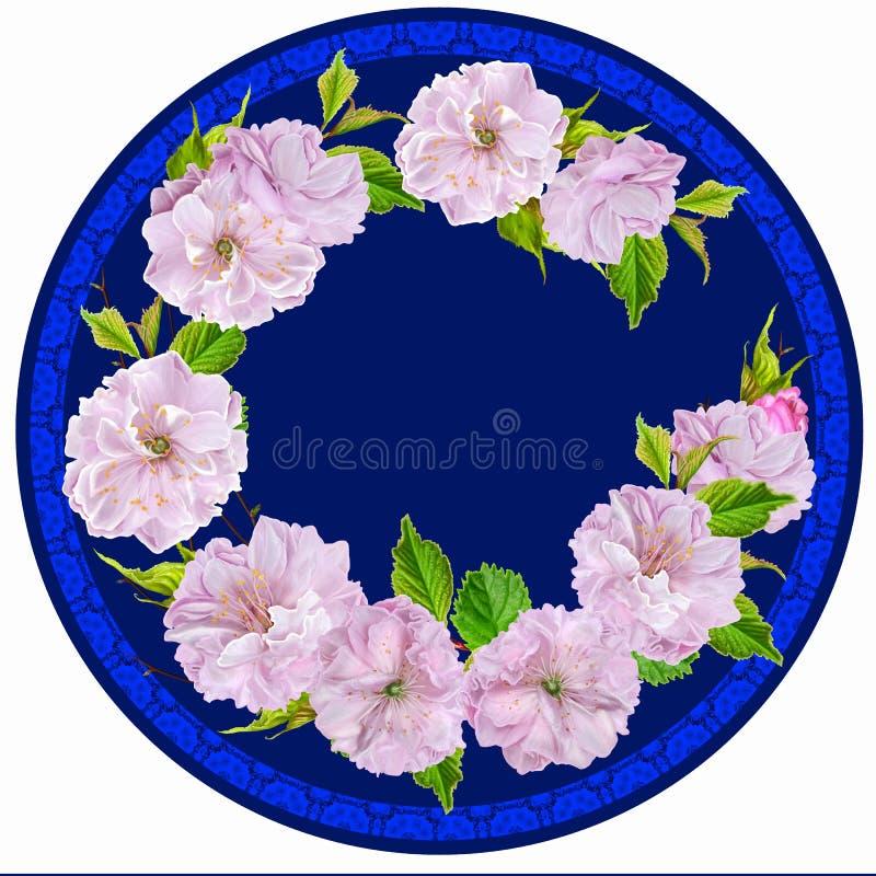 Flores da amêndoa do ramo em um círculo imagem de stock