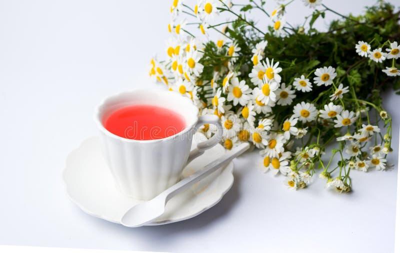 Flores da camomila e um copo do chá fotografia de stock