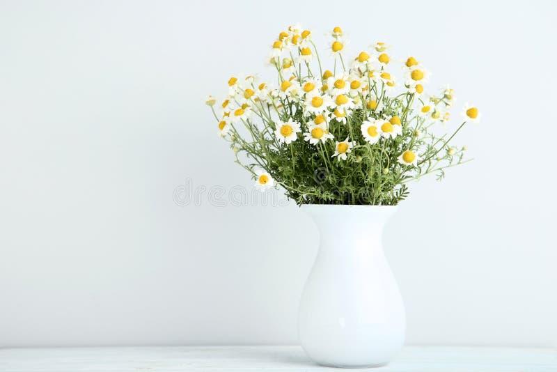 Flores da camomila no vaso fotografia de stock royalty free