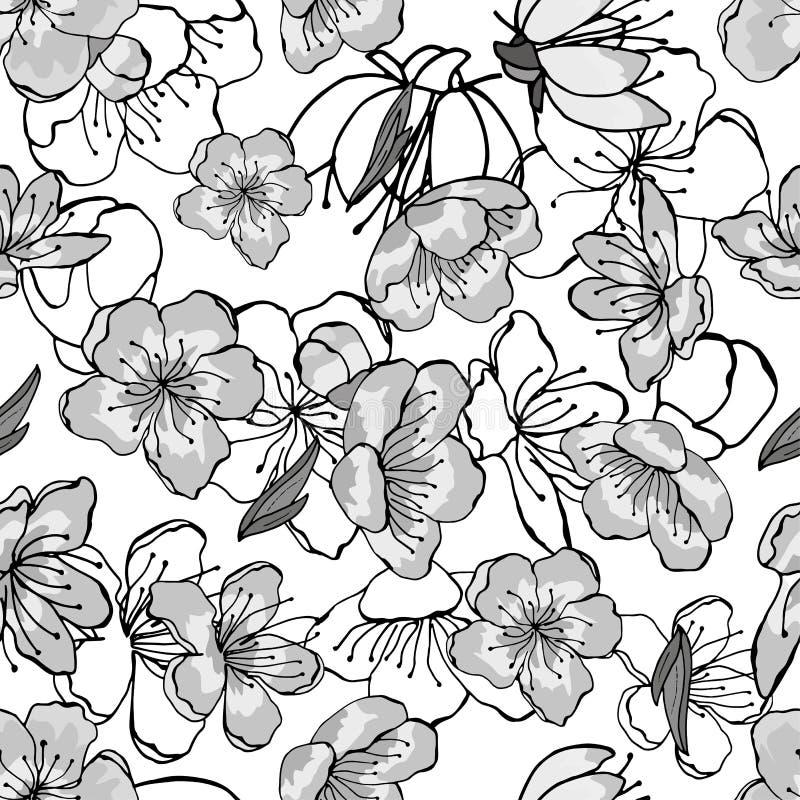 Flores da cereja branca, cinzenta, preta fotografia de stock royalty free