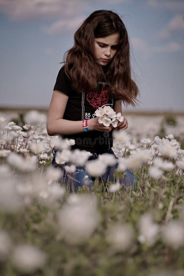 Flores da colheita da menina imagem de stock