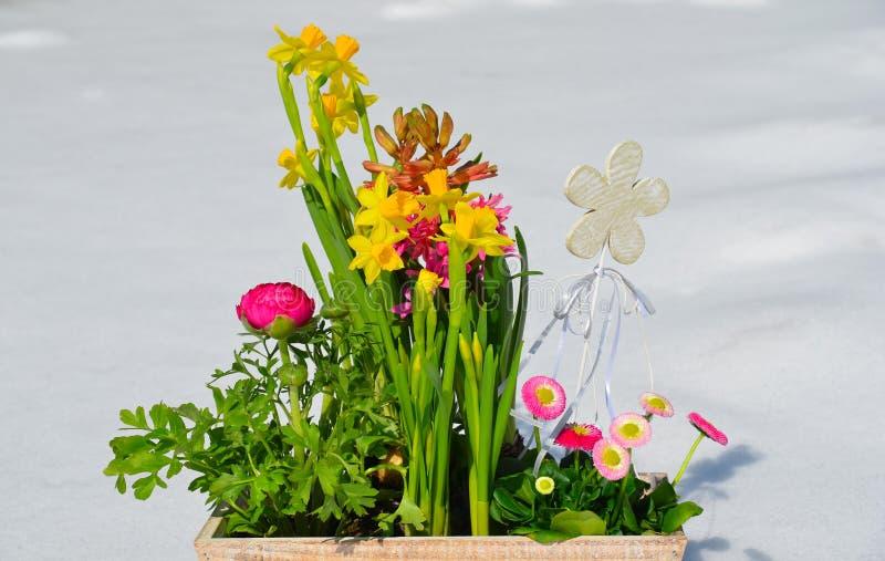 Download Flores no jardim da mola foto de stock. Imagem de shabby - 29843322