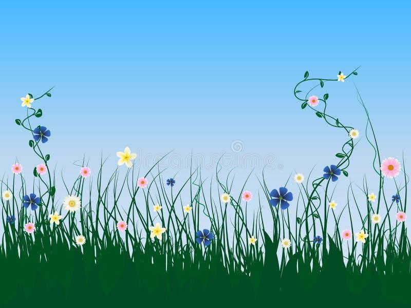 Flores da grama ilustração do vetor