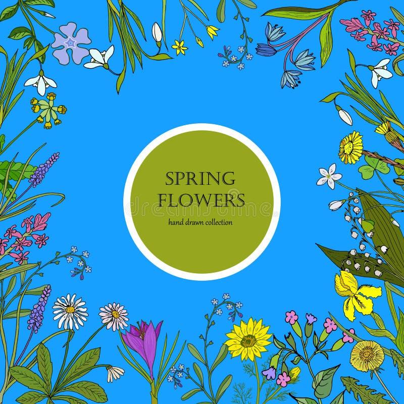 Flores da mola ajustadas ilustração stock